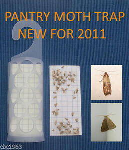 KRITTERKILL-LARDER-PANTRY-INDIAN-MOTH-PHEROMONE-TRAP-OVER-300-000-PADS-SOLD