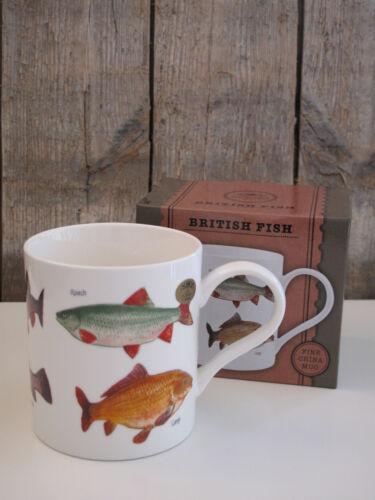 British Fish Fische // Fisch Kaffee Becher // Tasse The Leonardo Collection