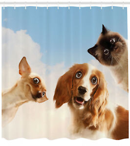 Funny Shower Curtain Cats Dogs in Sky Clouds Print for Bathroom