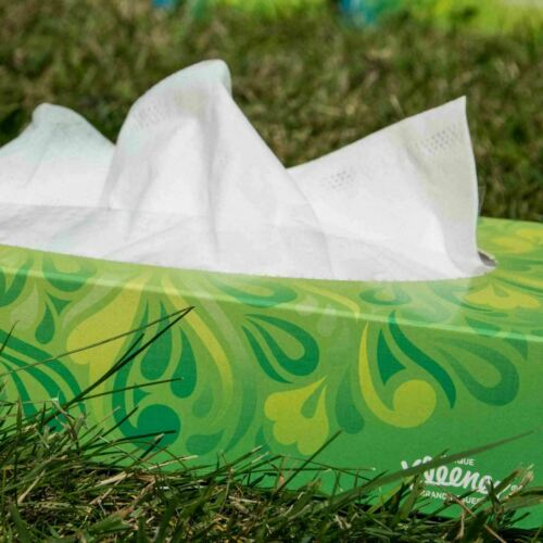 Pack of 6 Tissue Boxes 2 x Kleenex Balsam Facial Tissues