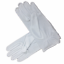 SALE 2019 Gloves White Masonic Services Ceremonial Gloves Sizes from XS to XXL