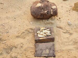Rare Antique égyptienne Antique Bijoux Box+20 or argent dorer OUSHEBTI Serv 2480BC