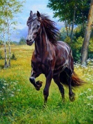 Hermosa Pintura Caballos Diamante 5D puntada cruzada Completo Taladro Cuadrado Animal Caballo