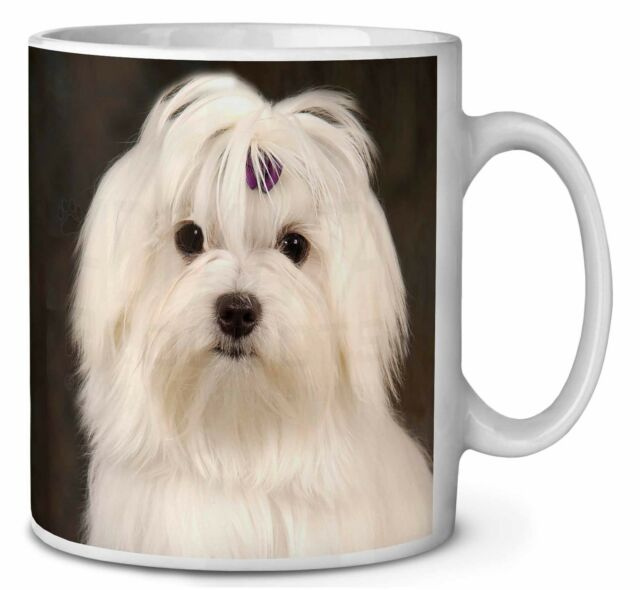 Maltese Dog Coffee/tea Mug Christmas Stocking Filler Gift Idea | eBay