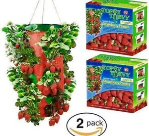 Strawberry Planter Hanging Topsy Turvy /&  Free Seeds