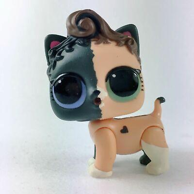 LOL Surprise Pets NEON KITTY Kitten Series 3 Wave 1 Doll Pet CAT Brown