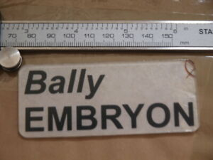 rare Bally Embryon pinball machine PROMO plastic 2 keyring ? key fob ?