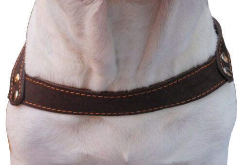 """Genuine Leather Dog Pulling Harness 1.5/"""" wide  25.5/""""-31/"""" chest  Amstaff Boxer"""