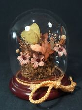 Dried Flower and Butterfly Display (ref B023)