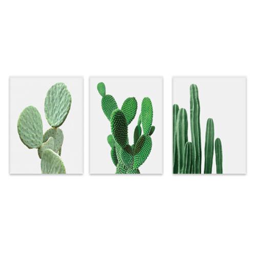 3x Leinwand Kaktus Pflanzen Wand Kunst Poster nordischen Wohnkultur Bild