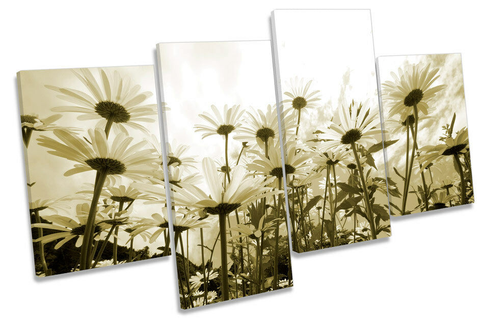 Daisy Sky Floral Flowers MULTI CANVAS WALL ART Boxed Framed