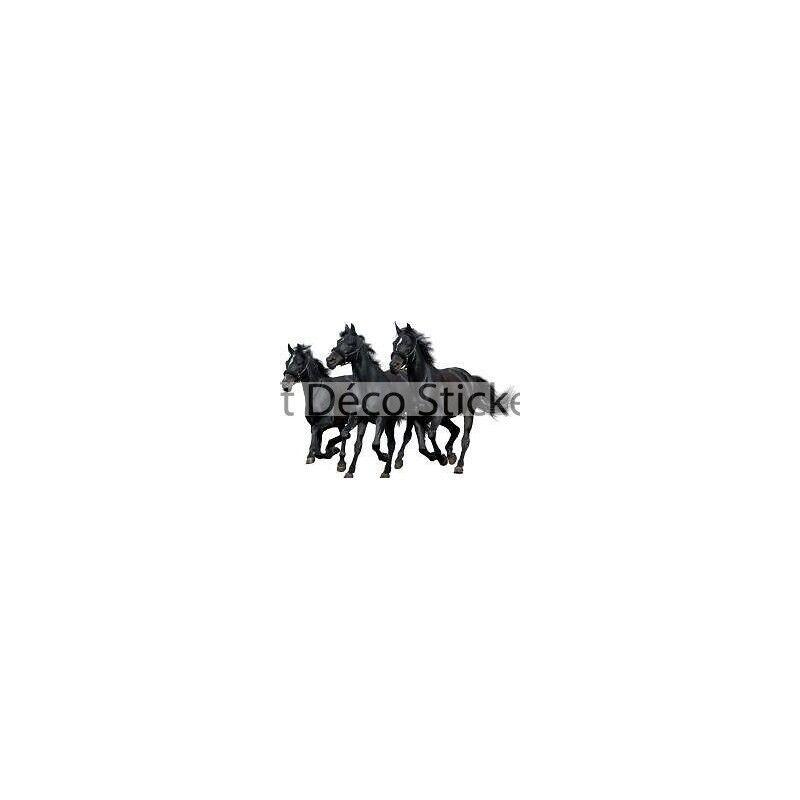 Aufkleber Tiere 3 Pferde 130x85cm