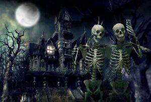 image is loading halloween haunted house skeletons selfies full moon spooky