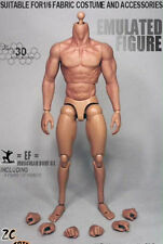 1/6 Scale Muscular Figure Body Seamless Arm 3.0 TTM19 For Wolverine USA
