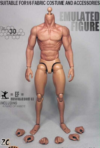 1//6 Scale Muscular Figure Body Seamless Arm 3.0 TTM19 For Wolverine USA