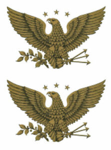 Vintage Image Patriotic Gold Early American Eagle Large Transfers Decals MIS525