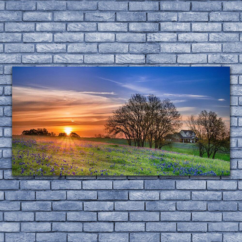 Leinwand-Bilder Wandbild Leinwandbild 140x70 Wiese Sonne Landschaft
