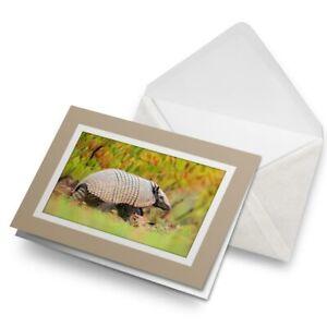 Greetings-Card-Biege-Six-Banded-Armadillo-Brazil-Animal-Nature-24195