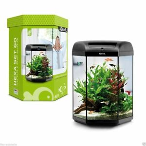 aquael hexa glas aquarium set 60l 6 eckig komplettset led. Black Bedroom Furniture Sets. Home Design Ideas