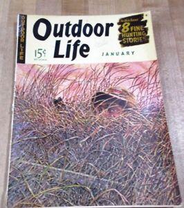 Outdoor Life Janvier 1942 Wm H Foster Cover Artiste De Chasse Et De Pêche >-afficher Le Titre D'origine