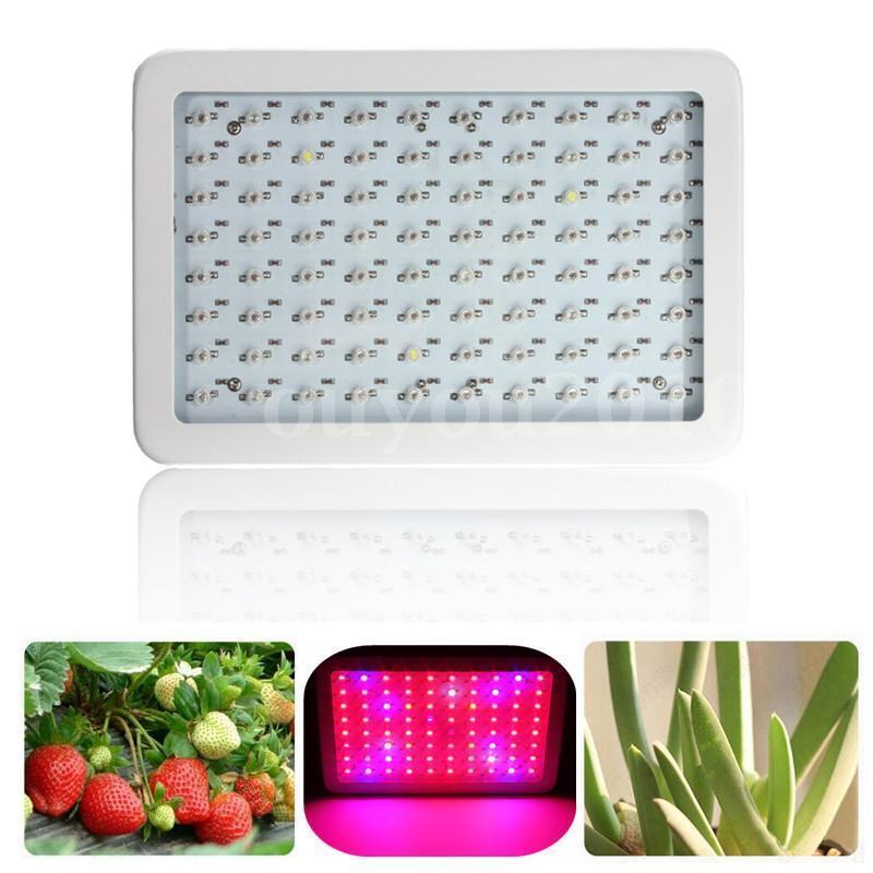 800W LED Grow Light Hydroponic Medical Plant Veg Flower Full Spectrum Panel