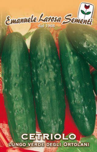 50 Semi/Seeds CETRIOLO Lungo Verde degli Ortolani