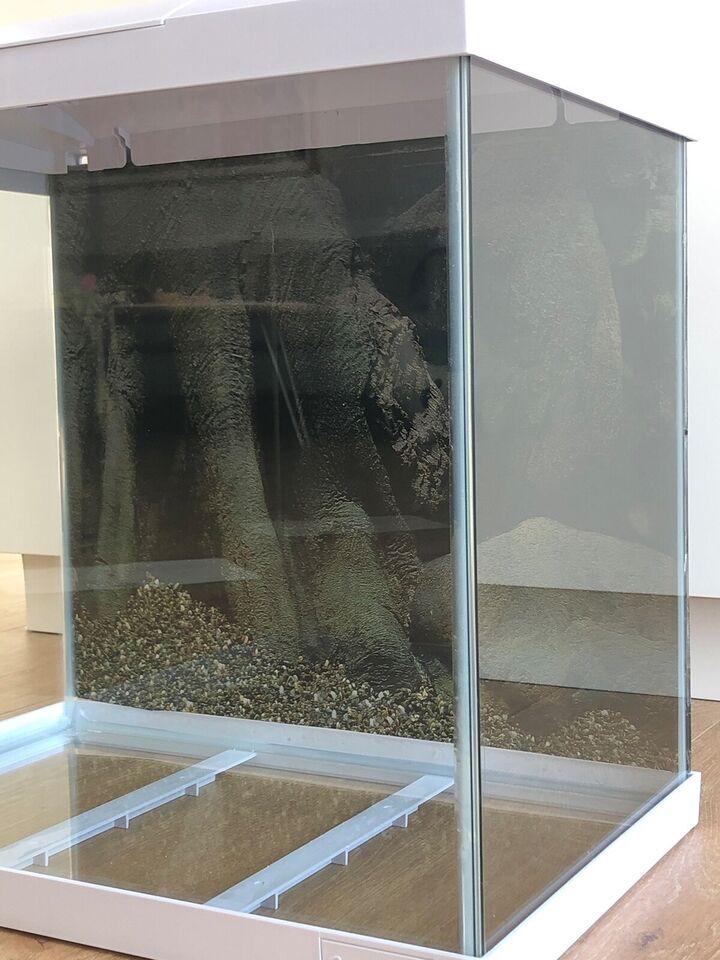 Akvarium, 50 liter