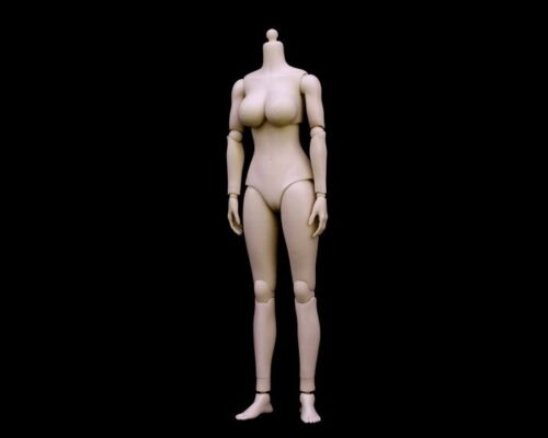 Pale Ver N001 Rubber Skin Layer NEW 1:6 Scale Female Large Breast Body Figure