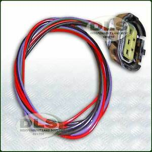 Stop/Tail Lamp Link Lead and Plug Land Rover Defender VIN MA939976 on (STC4637)