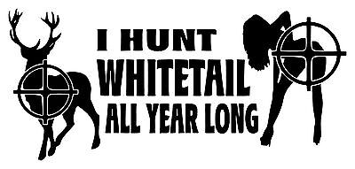 I Hunt Whitetail All Year Funny Car Truck Window Hunting Decal Sticker Custom