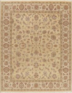 All-Over-Floral-Assorted-Tan-Camel-Agra-Oriental-Area-Rug-Hand-Knotted-Wool-8x10