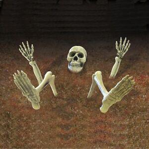 Decoration Halloween A Vendre