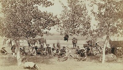 Texas antique photo Cowboys on the Chuck Wagon 1908 Old West life Mules