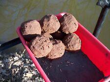 24 Kg KFS Angelfutter Brassen Mix 1Kg//1,25EUR Fertigfutter,Ems,Donau