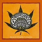 Black Power Flower (Ltd.Black Vinyl) von Brant And The Low Desert Punk Band Bjork (2014)