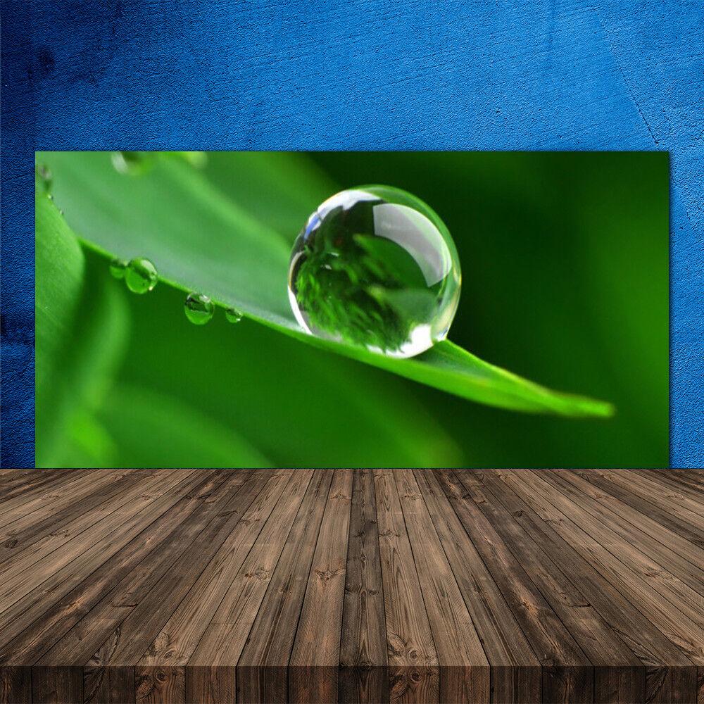 Crédence de cuisine en verre Panneau 120x60 Floral Feuille Goutte D'eau