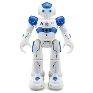Robot-Humanoide-intelligent-programmable