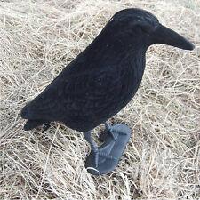 Garden Flocked Hard Plastic Flambeau jet black Crow Decoy For Hunting Stand Body