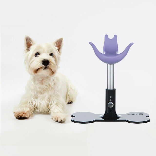 Adjustable Beauty Pet Dog Cat Trimming Grooming Stand Table