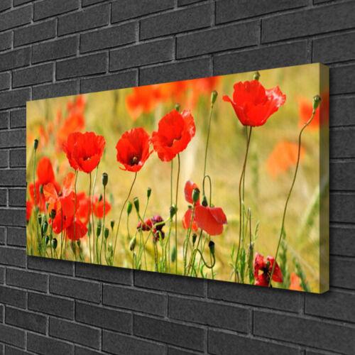 Leinwand-Bilder 100x50 Wandbild Canvas Kunstdruck Mohnblumen Natur