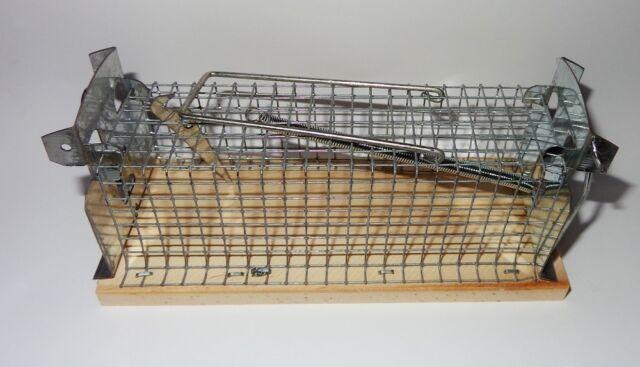 Zündspule Passend für Honda Motor GCV135 GCV160 Rasemäher 30500-ZL8-004//-014 GO