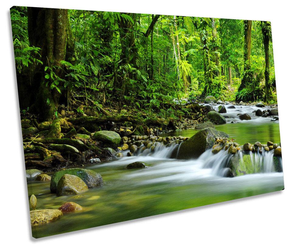 Grün Forest River Landscape SINGLE CANVAS WALL ART Print Picture