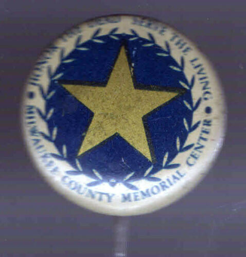 WWI Homefront pin MILWAUKEE County MEMORIAL Honor the Dead Serve the Living