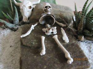 Skeletal Remains//Bag of Bones for Miniature Garden or Halloween