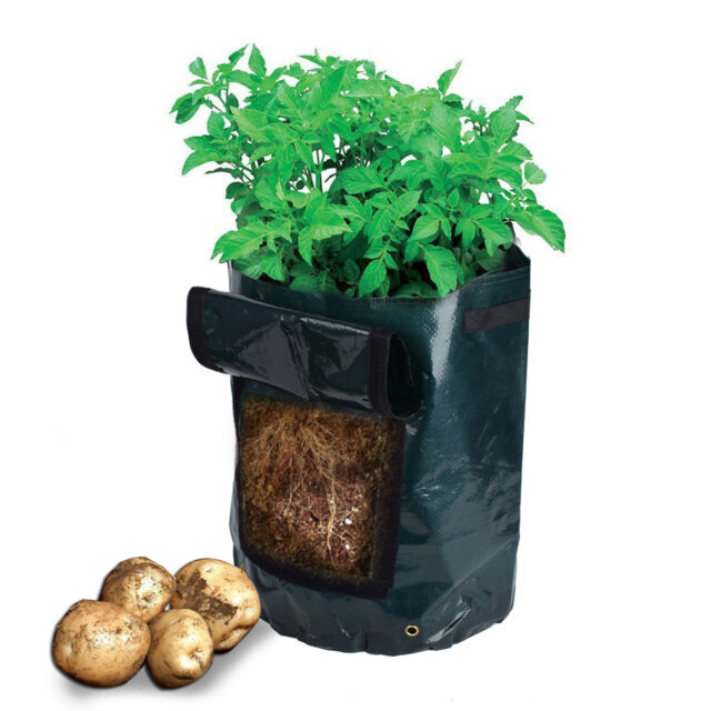 Fresh Garden Access Flap Harvesting Patio Amgate Potato Grow Planter Bag LE5