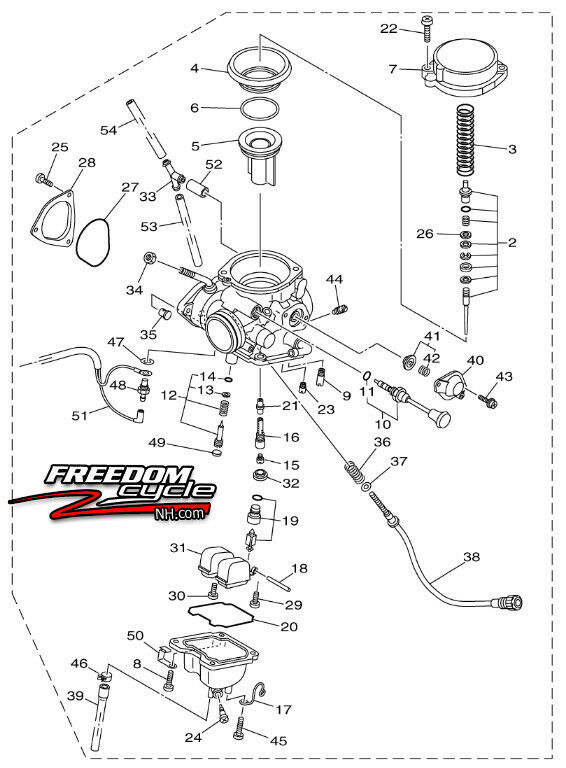 Bruce /& Shark D/émarreur pour Yamaha YFM25R Raptor 250 2008-2013 /Édition sp/éciale 2 2008-2009