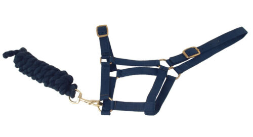Harlequin Headcollar And Rope Set equestrian Shetland pony cob fully adjustable