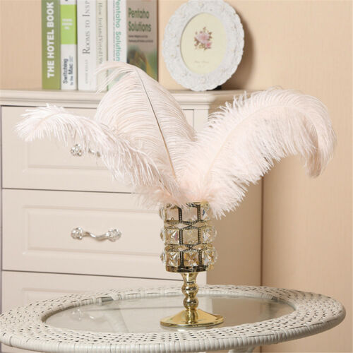 Wedding Costume DIY Plume Ornaments Party Quality Ostrich Feathers Decor 45-50cm