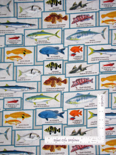 Yard Fish Catalina Island Tropical Fish Cotton Fabric 8202 Elizabeth/'s Studio