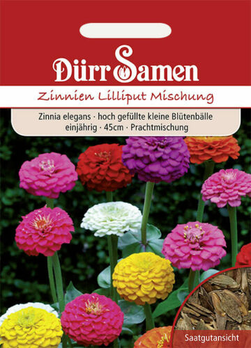 Dürr Samen Prachtmischung 45cm einjährig Zinnien /'Lilliput/'